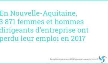 Nouvelle-Aquitaine : Observatoire de l'emploi des entrepreneurs 2018